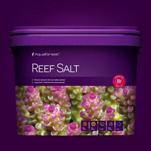 ReefSalt10l