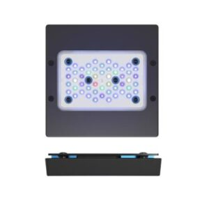 Radion XR15G5 BLUE LED Light