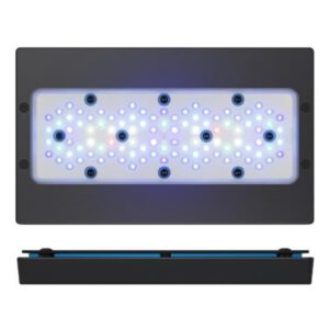 Radion XR30 G5 BLUE LED Light