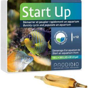 start up prodibio