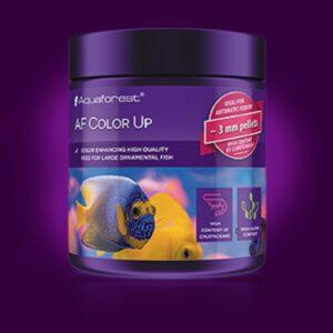 color up aquaforest