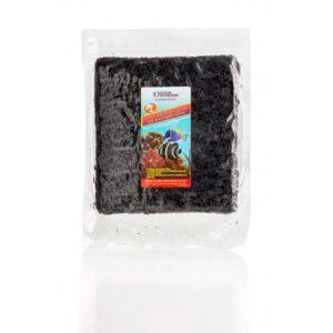 red seaweed bulk