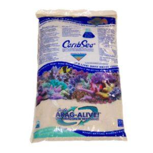 arena viva caribsea