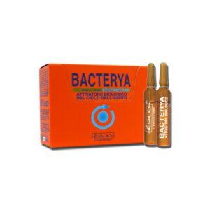 bacterya equo