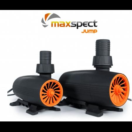 Jump Pump Maxspect